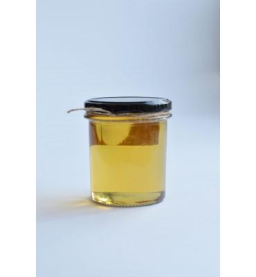 Syrop z agawy BIO (100g)