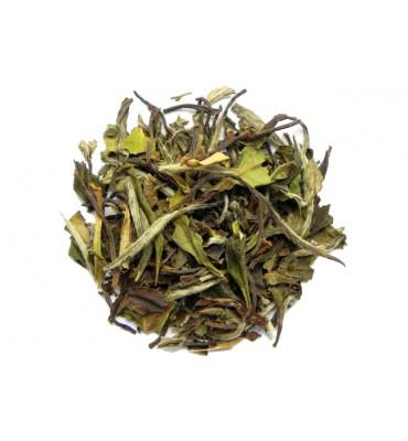 Herbata Pai Mu Tan (10g)